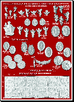 Catalogue page 18